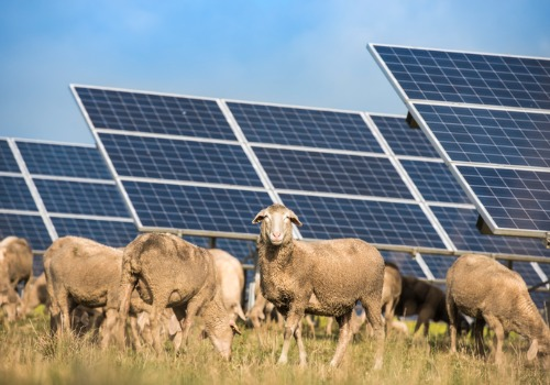 Agricultural Solar Glen Allen VA
